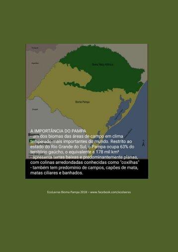 A importância do Bioma Pampa