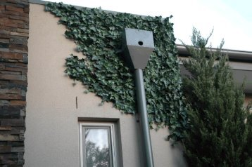 Artificial Fake Ivy Wall That Looks Real