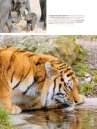 Zoo Zürich Jahresbericht 2017 - Page 7