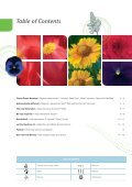 Viola wittrockiana - Benary - Page 3
