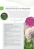 FastraX-Stauden von Benary – Kommen ganz groß raus! - Page 6
