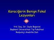 Dr_Ceyla_Basaran.pdf