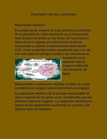 Respiración aerobia y anaerobia (1)