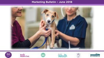 Marketing Bulletin