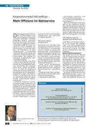 Mehr Effizienz im Netzservice - SAG