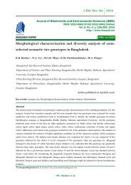 Morphological characterization and diversity analysis of some selected aromatic rice genotypes in Bangladesh