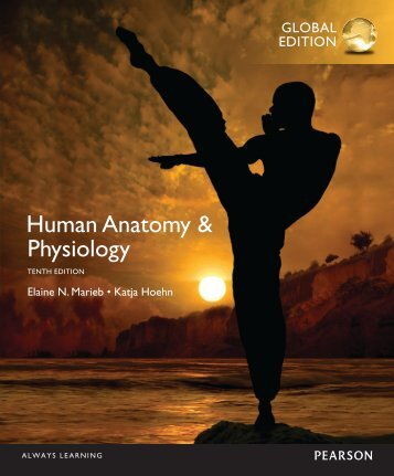 Pdf Anatomy Physiology For Dummies 3rd Edition For Dummies