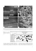 SHRIMP U-Pb age of the radiolarian-bearing Yoshiki Formation in ... - Page 5