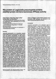ip protein of Legionella pneumophila exhibits peptidyl-prolyl-cis ...
