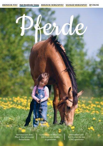 Pferde  -05.06.2018-
