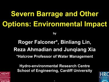Severn Barrage and Other Options: Environmental Impact