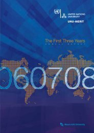 The First Three Years - UNU-Merit - United Nations University