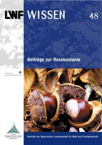 Das Holz der Rosskastanie - Bayerische Landesanstalt für Wald und ...