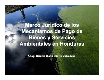 Marco Jurídico de los Mecanismos de Pago de Bienes y Servicios ...