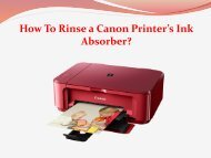 How To Rinse a Canon Printer's Ink Absorber?