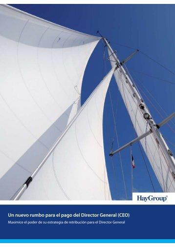 Un nuevo rumbo para el pago del Director General (CEO) - Hay Group