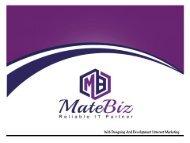 Matebiz Web Design India Best Web Agency