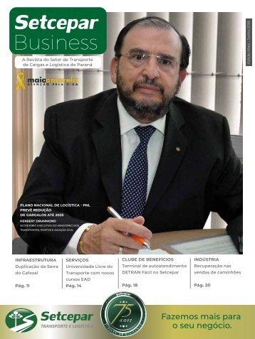 Revista Setcepar II