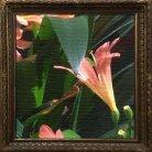 Garden of Flora - Digital booklet - Page 5