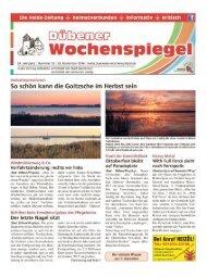Dübener Wochenspiegel - Ausgabe 22 - 23_11_2016