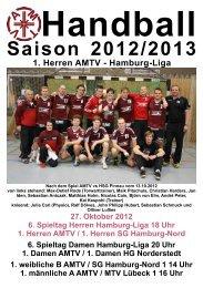 Saison 2012/2013 - AMTV Hamburg