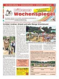 Dübener Wochenspiegel - Ausgabe 14 - 27_07_2016
