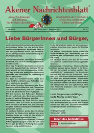 Ausgabe 517 vom 17.12.2010 - Stadt Aken (Elbe)