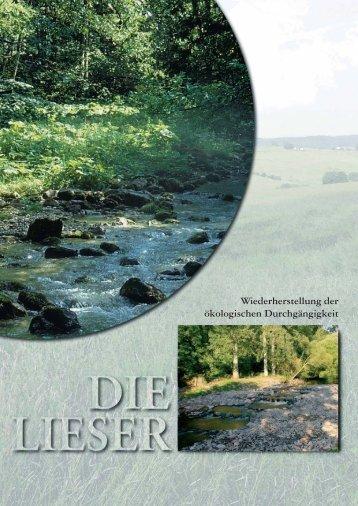 Das Liese - Landkreis Bernkastel-Wittlich