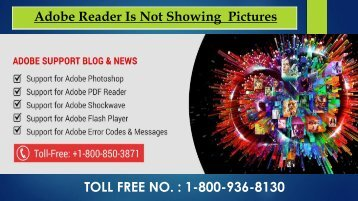 Adobe Reader Is Not Showing Pictures? Dial 1-800-936-8130 Toll-Free