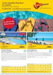 BILLA Reisen Flugreisen-Angebote Postwurf KW24