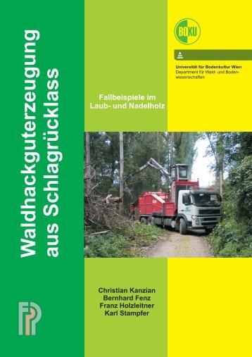 waldhackgut schlagrücklass fallbeispiele 2006 - Department für ...