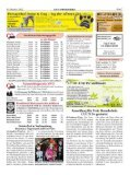 Dübener Wochenspiegel - Ausgabe 19 - 10-10-2012 - Page 7
