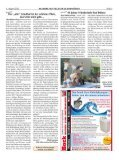 Dübener Wochenspiegel - Ausgabe 14 - 01-08-2012 - Page 5