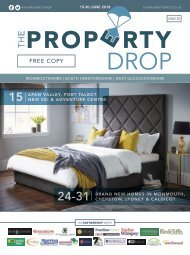 Property Drop Issue 30