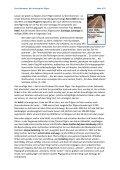 Ursula Bernauer Was bringt uns auf den Weg? Der Archetyp des ... - Seite 2