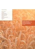 Bodenverschiebungen bei Bauvorhaben - Amt für Landschaft und ... - Seite 2