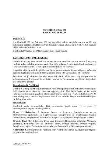 COMBİCİD 250 mg İM ENJEKTABL FLAKON FORMÜLÜ - Bilim İlaç