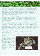 4. Pèsol - Page 2