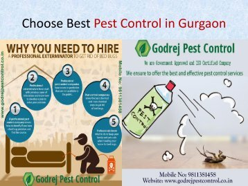 Hire The  Best Pest Control Services in Gurgaon