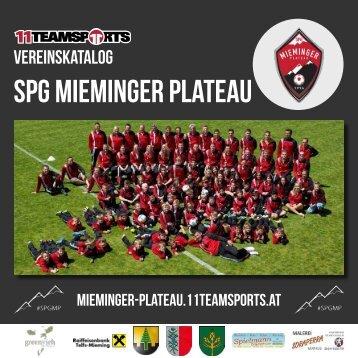 Online Mieminger Plateau