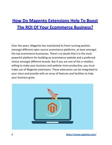 How Do Magento Extensions Help to Boost the ROI of Your Ecommerce Business?