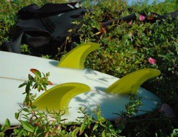 Buy Surfboard Fins Online