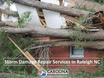 Storm Damage Repair Services in Raleigh NC