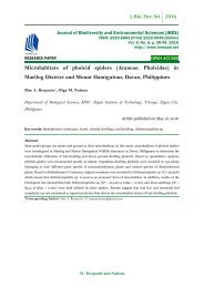 Microhabitats of pholcid spiders (Araneae: Pholcidae) in Marilog District and Mount Hamiguitan, Davao, Philippines