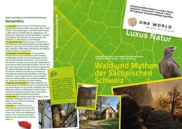Reiseinfos - Bad Schandau