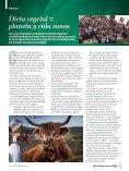 Boletín Vegetus nº 28, junio 2018 - Page 3