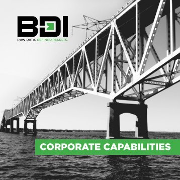 BDI Corporate Capabilities
