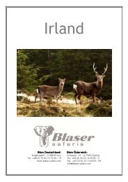Blaser Safaris Reiseinfo Kanada Yukon