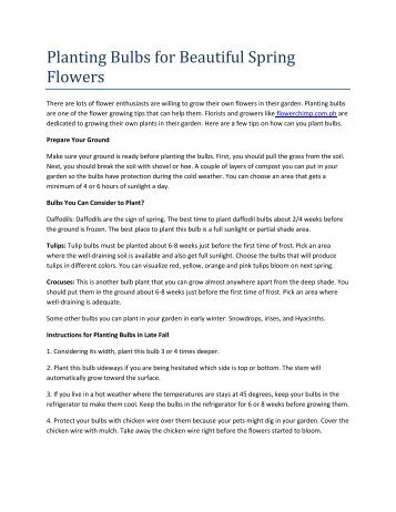 Planting Bulbs for Beautiful Spring Flowers