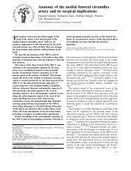 Anatomy of the medial femoral circumflex artery and its surgical ...